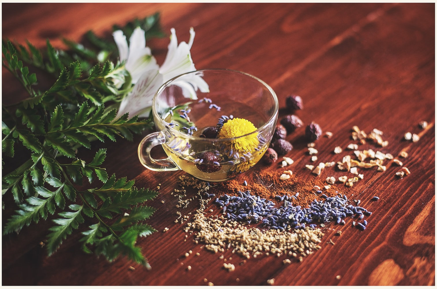 Acupuncture and Herbal Medicine Canning Vale Willetton